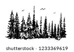 hand drawn sketch of pine... | Shutterstock .eps vector #1233369619