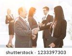 assistant meets a businessman... | Shutterstock . vector #1233397303