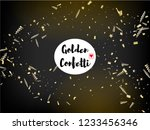 modern magic glitter confetti ... | Shutterstock .eps vector #1233456346