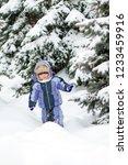boy enjoying the first snow in... | Shutterstock . vector #1233459916
