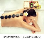 beautiful woman relaxing in spa ... | Shutterstock . vector #1233472870