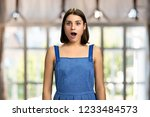 happy surprised woman on... | Shutterstock . vector #1233484573