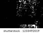 grunge overlay layer. abstract... | Shutterstock .eps vector #1233492019