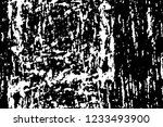grunge overlay layer. abstract... | Shutterstock .eps vector #1233493900