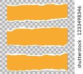 long horizontal torn off pieces ... | Shutterstock .eps vector #1233498346