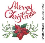 watercolor christmas floral... | Shutterstock . vector #1233518959