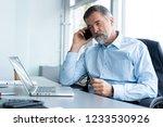 executive senior businessman... | Shutterstock . vector #1233530926