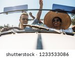 multiracial couple in a... | Shutterstock . vector #1233533086