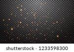 glitter particles effect. gold...   Shutterstock .eps vector #1233598300