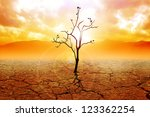 Illustration Of A Dried Tree O...
