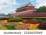 beijing  chian   october 20 ... | Shutterstock . vector #1233633349