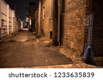 dark and scary urban city alley ... | Shutterstock . vector #1233635839