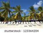 white sandy beach with palm... | Shutterstock . vector #123364204