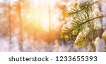 Winter Bright Background With...