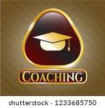 shiny emblem with graduation... | Shutterstock .eps vector #1233685750