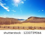 colorful yellow autumn in... | Shutterstock . vector #1233739066