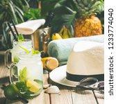 summer vacation concept  ... | Shutterstock . vector #1233774040