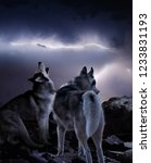 Wolves Emotionally Perceive A...