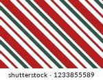 seamless pattern. stripes on...   Shutterstock .eps vector #1233855589