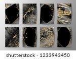 set of elegant brochure  card ... | Shutterstock .eps vector #1233943450