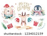 set of christmas woodland cute... | Shutterstock . vector #1234012159
