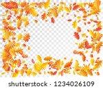 oak  maple  wild ash rowan... | Shutterstock .eps vector #1234026109