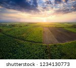 aerial view from drone sugar... | Shutterstock . vector #1234130773