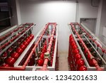 carbon dioxide storage room for ... | Shutterstock . vector #1234201633