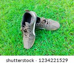 sports shoes on the green lawn | Shutterstock . vector #1234221529