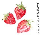 strawberry. sketch of berries... | Shutterstock . vector #1234314379