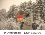 christmas happy man with beard... | Shutterstock . vector #1234326709