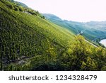 panoramic view of moselle... | Shutterstock . vector #1234328479