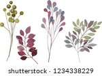 watercolor floral elements on a ... | Shutterstock . vector #1234338229