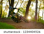 professional dh cyclist riding... | Shutterstock . vector #1234404526