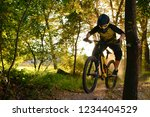 professional dh cyclist riding... | Shutterstock . vector #1234404529