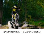 professional dh cyclist riding... | Shutterstock . vector #1234404550