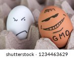 gmo food  the usual egg is... | Shutterstock . vector #1234463629