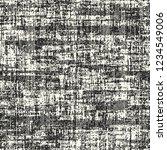 monochrome variegated striped... | Shutterstock .eps vector #1234549006