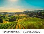 casale marittimo village ... | Shutterstock . vector #1234620529