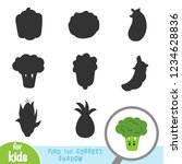 find the correct shadow ... | Shutterstock .eps vector #1234628836