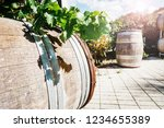 wine barrel with fresh leaves... | Shutterstock . vector #1234655389
