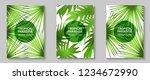 tropical paradise leaves vector ... | Shutterstock .eps vector #1234672990