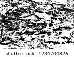 abstract background. monochrome ... | Shutterstock . vector #1234704826