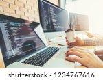 developing programmer team... | Shutterstock . vector #1234767616