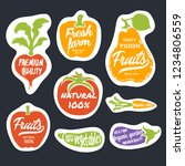 organic food hand drawn labels... | Shutterstock . vector #1234806559