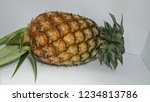 single whole pineapple isolated ... | Shutterstock . vector #1234813786