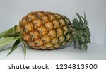 single whole pineapple isolated ... | Shutterstock . vector #1234813900