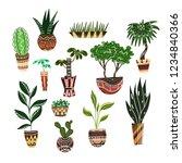 set of cartoon home flowers in...   Shutterstock .eps vector #1234840366