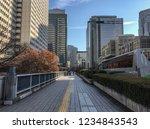 tokyo  japan   jan 3  2016.... | Shutterstock . vector #1234843543