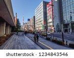 tokyo  japan   jan 3  2016.... | Shutterstock . vector #1234843546